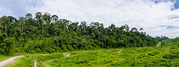 18 Western border of Tabin reserve